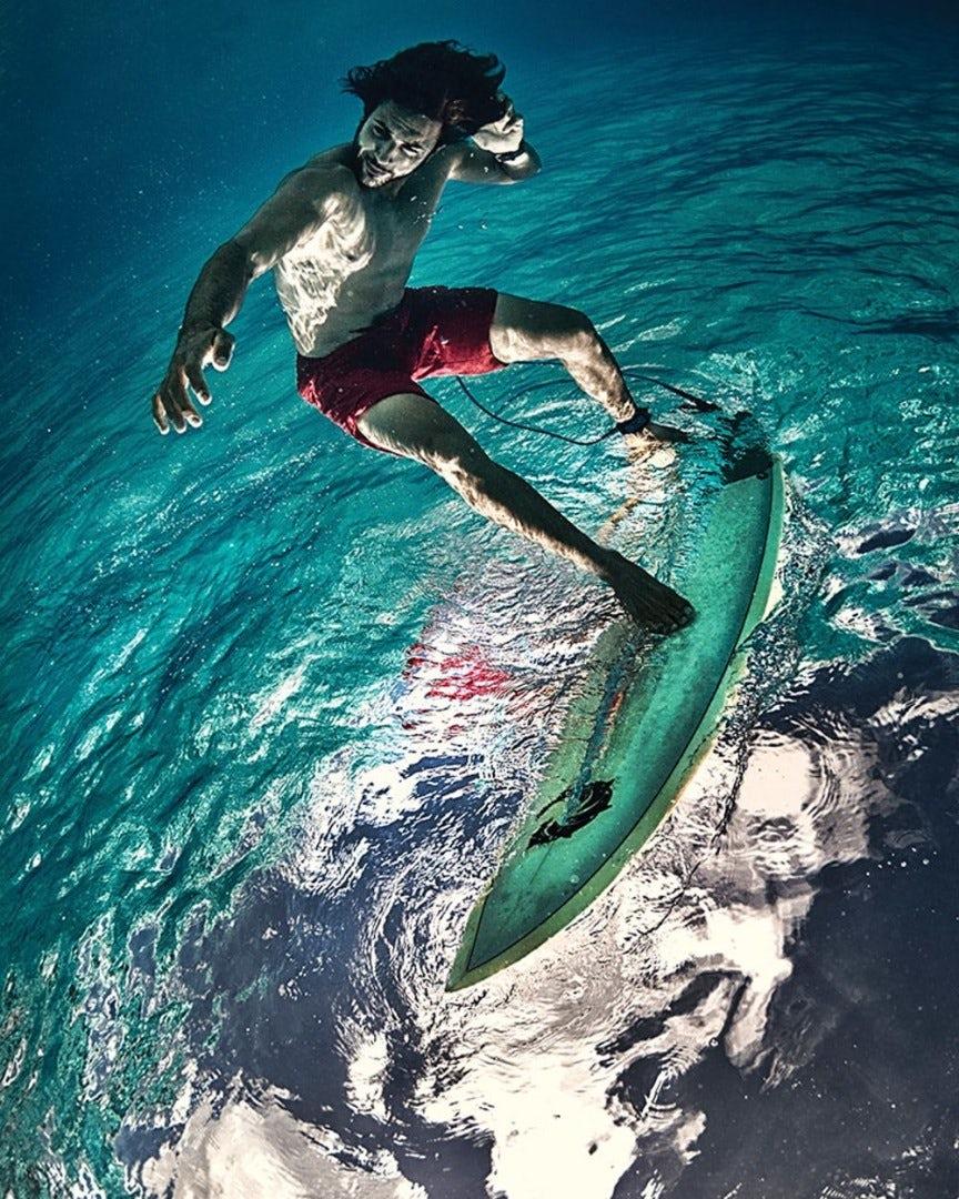 underwater-photography-contest-20.jpg
