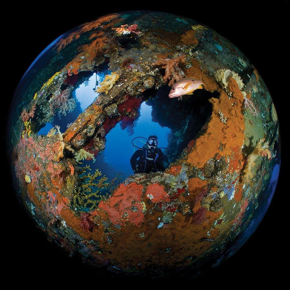 underwater-photography-contest-21.jpg