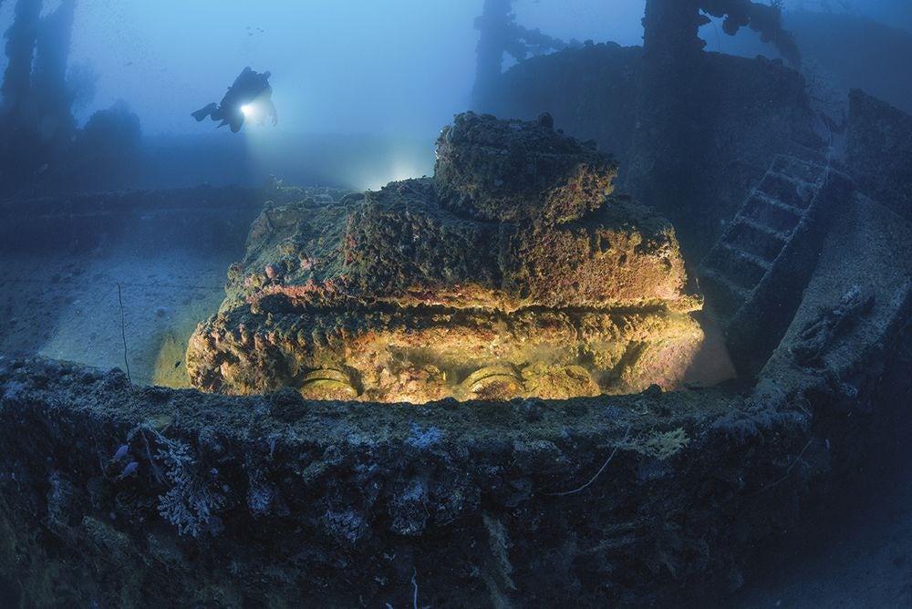 underwater-photography-contest-30.jpg