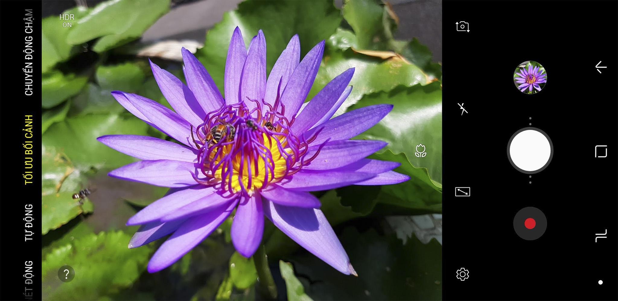Screenshot_20181101-095633_Camera-1.jpg
