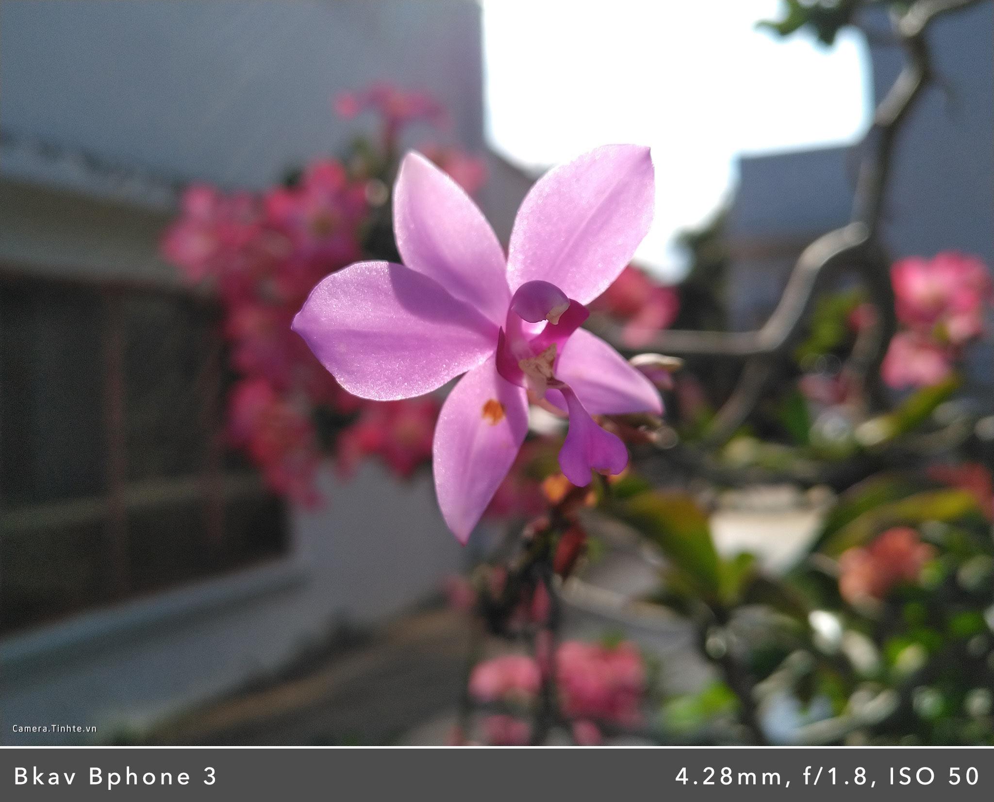 Camera.Tinhte.vn_Bphone-3_IMG_20181104_145122.jpg