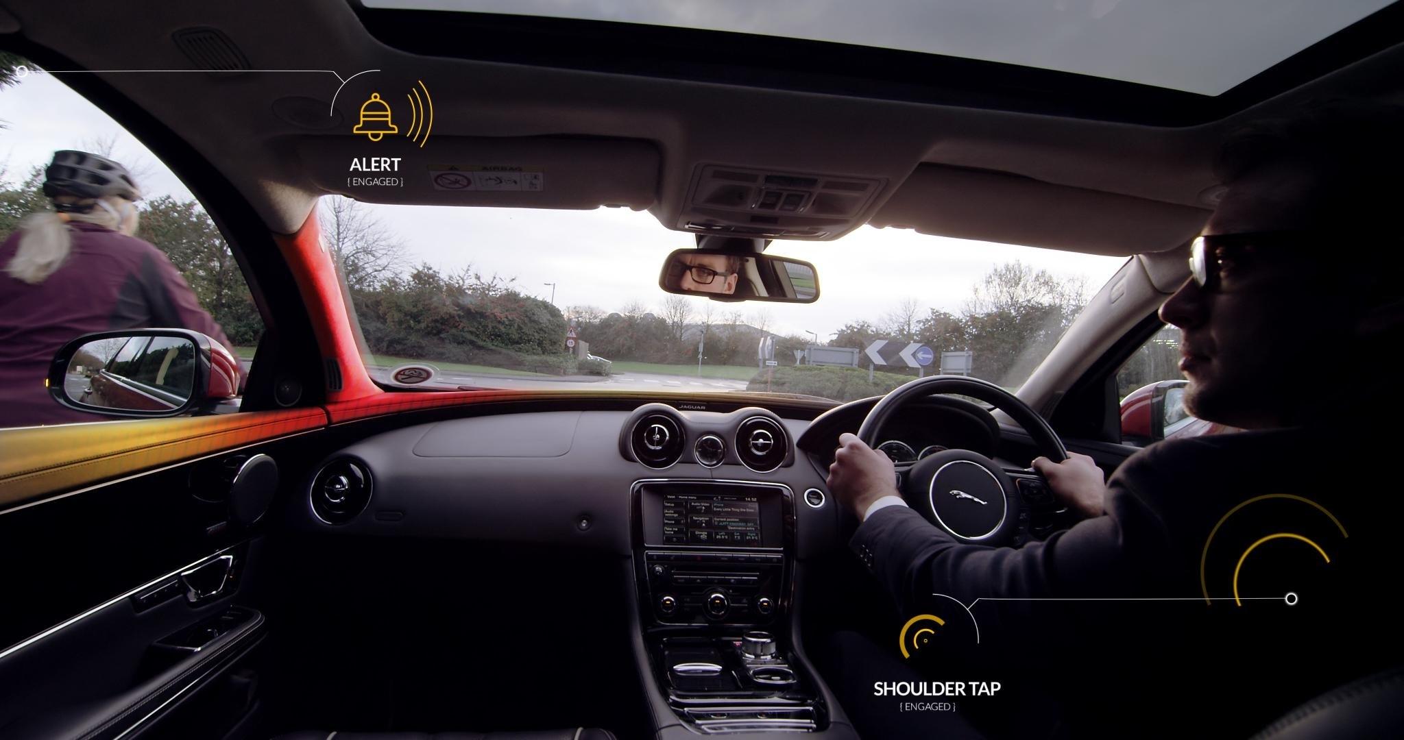 Jaguar alert.jpg