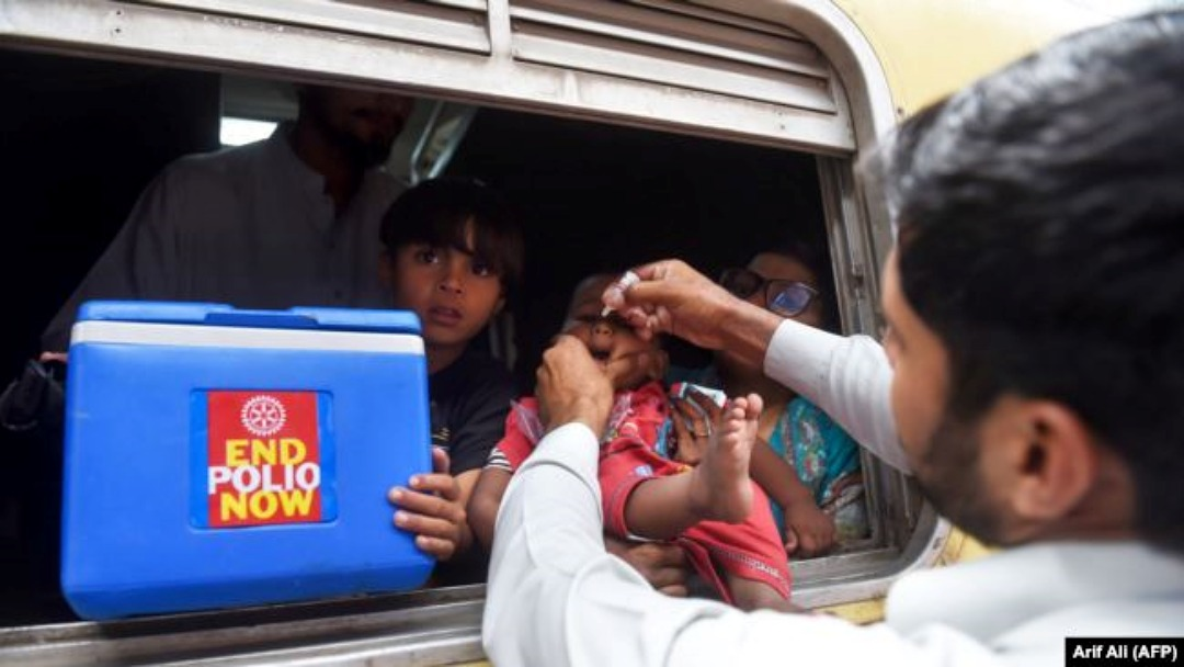 polio.jpg