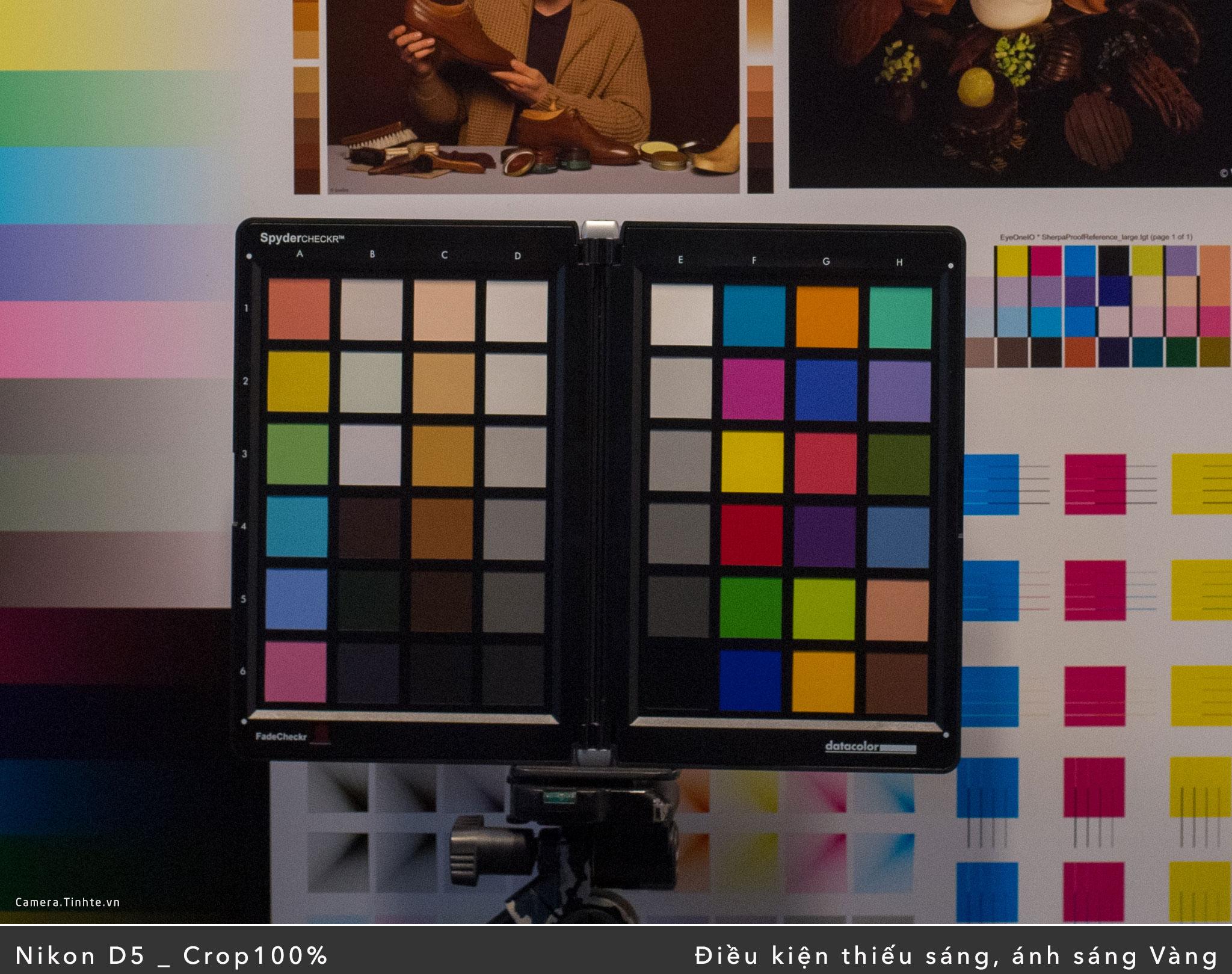 D5_Vang_Color_DSC_1167-Crop.jpg