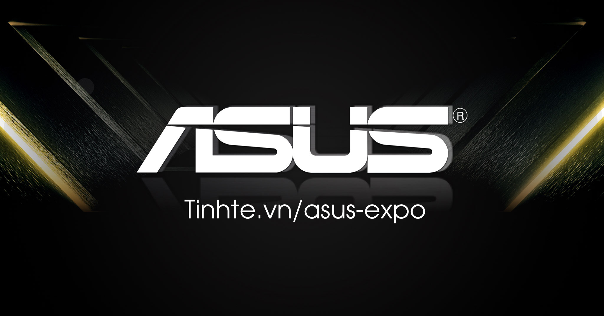 Asus Expo