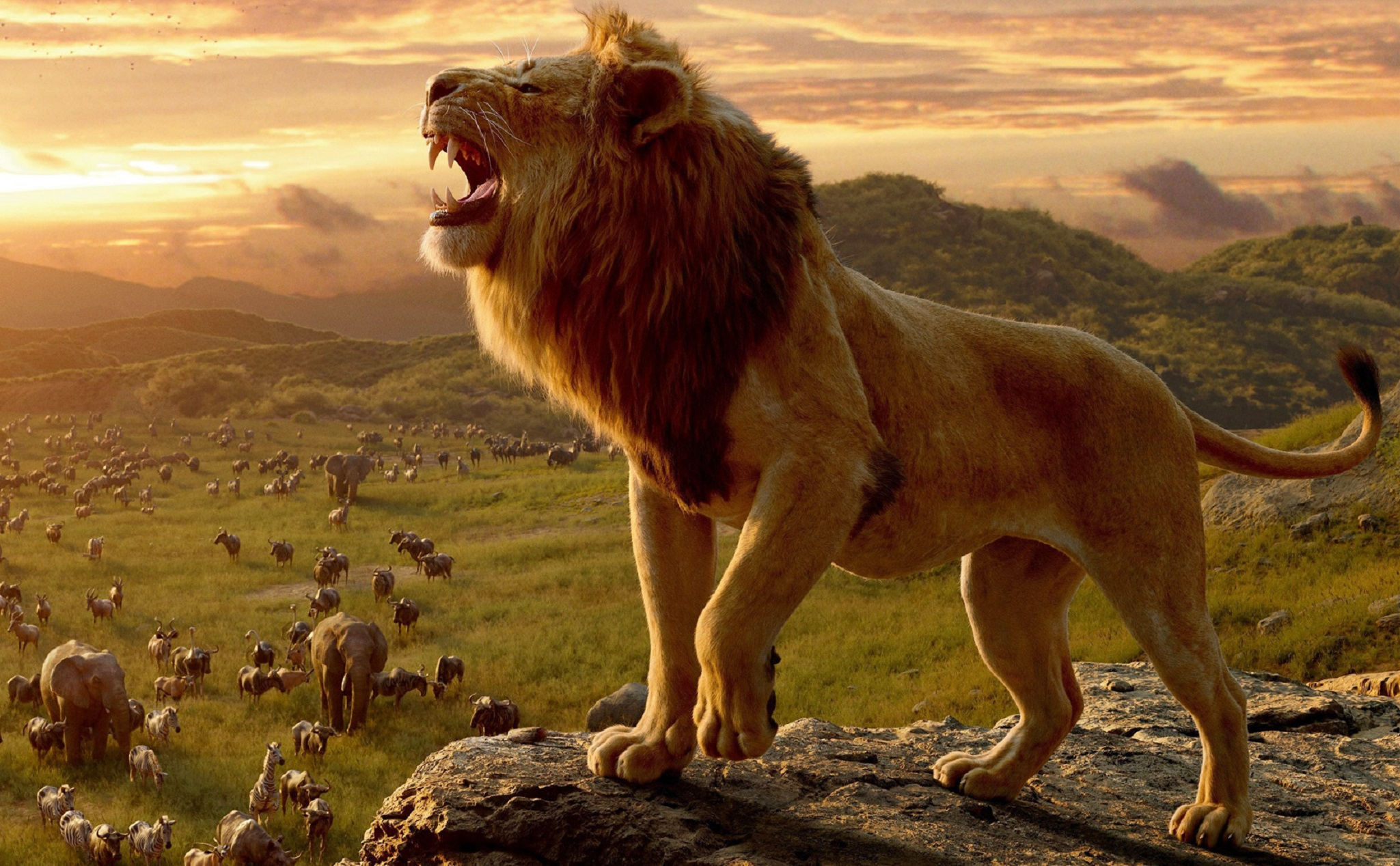 cover-the-lion-king.jpg