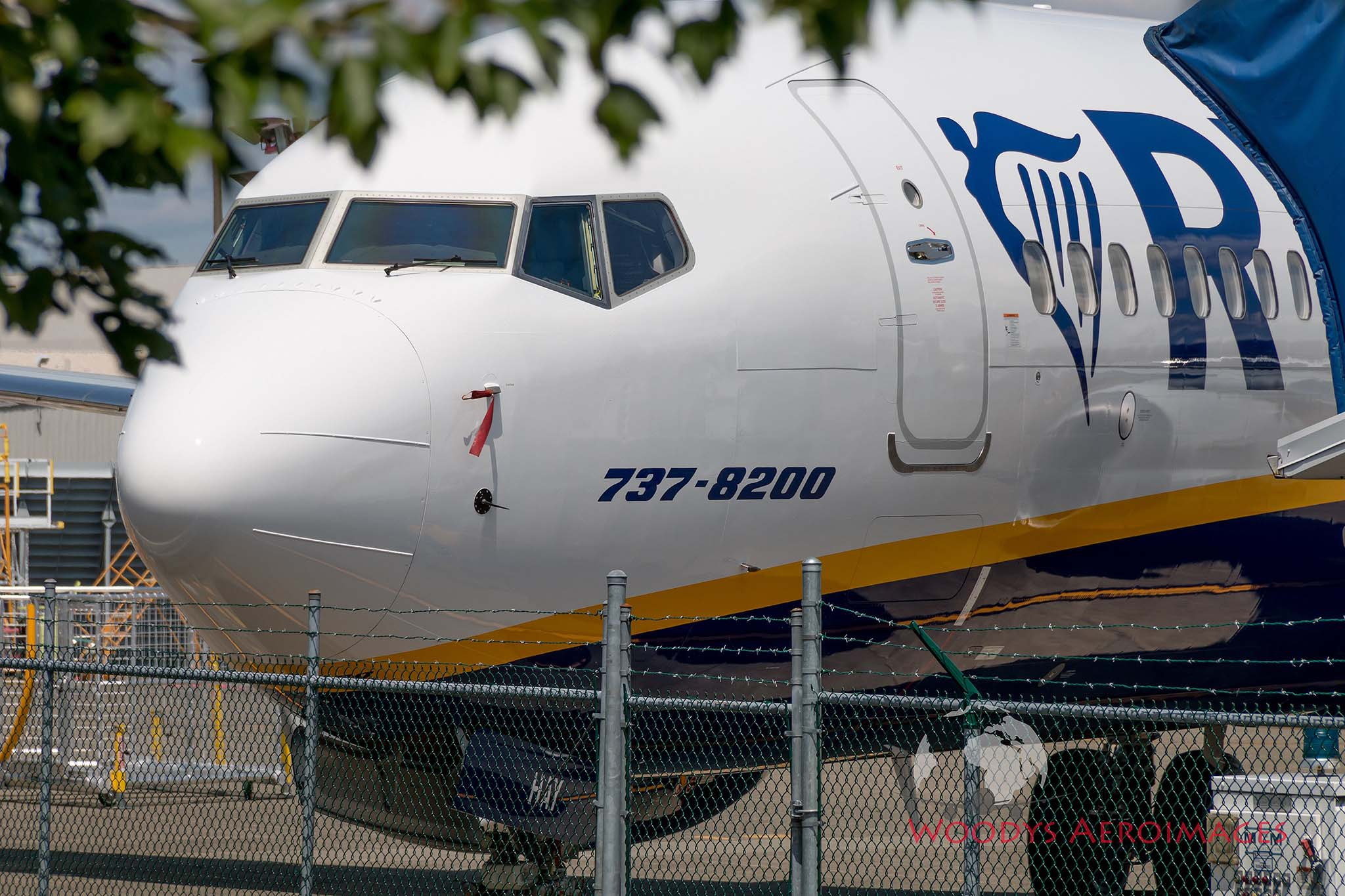 737MAX_RyanAir.jpg