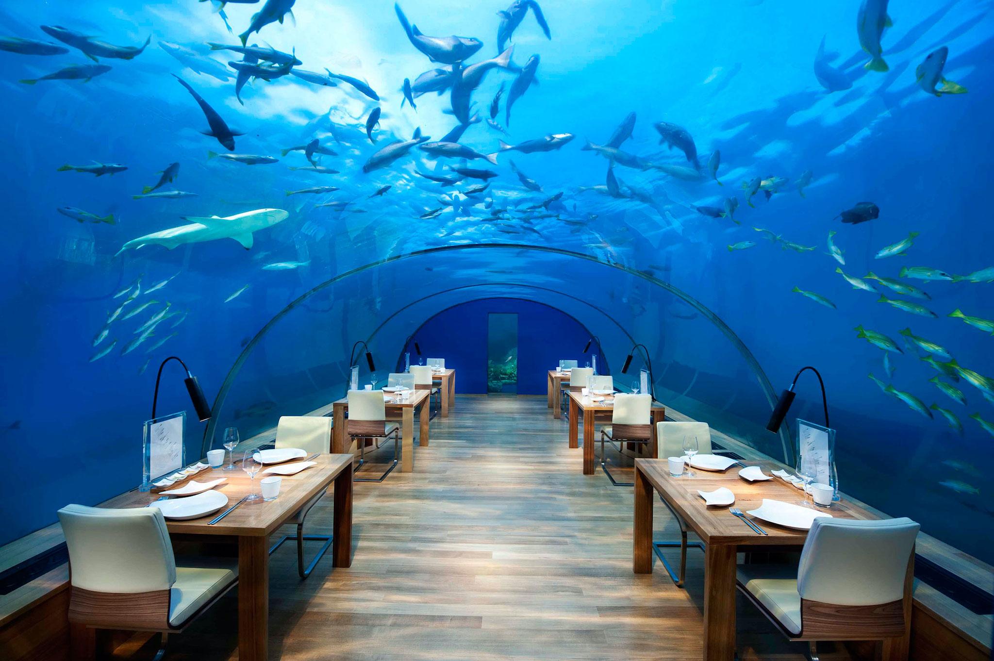 conrad_maldives_6.jpg